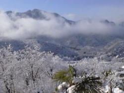 散歩途中の雪景色(熊倉山が見えます)