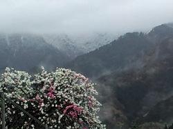 雪雲に覆われた山頂