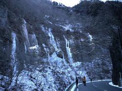 出合の氷柱全景